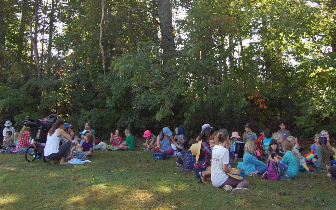 Our Waldorf Community:  Who are we?